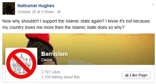 Lumping the beliefs of all Americans in with those of the Ban Islam Facebook page is a bit narrow-minded, don't you think?
